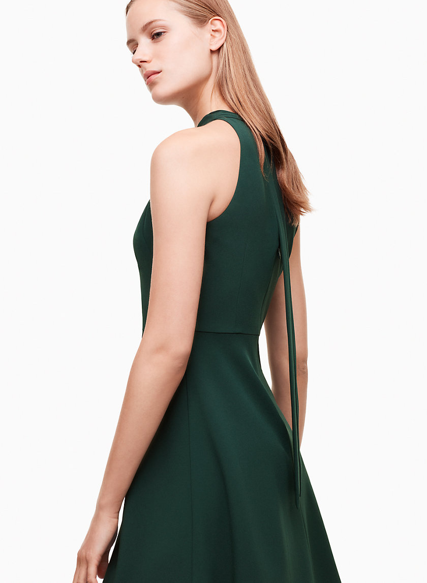 Babaton PETROS DRESS | Aritzia