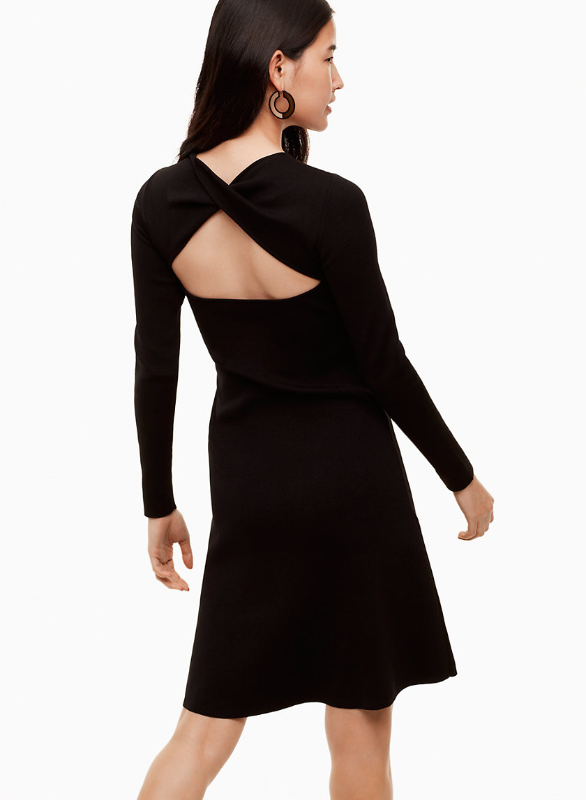 Babaton ANZAI DRESS | Aritzia