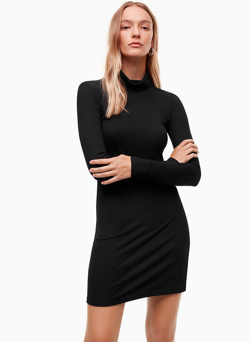 Talula TURTLENECK MINI DRESS | Aritzia