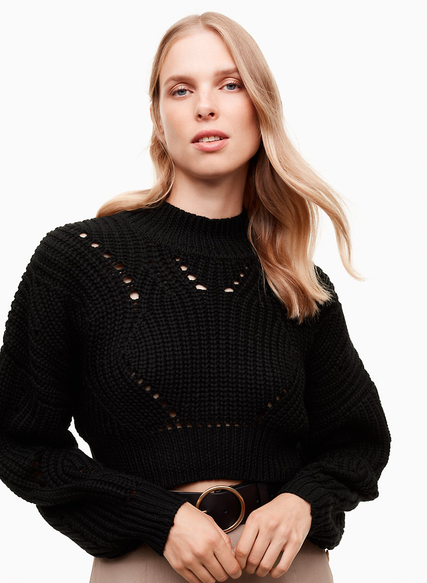 Wilfred GOULAINE SWEATER | Aritzia
