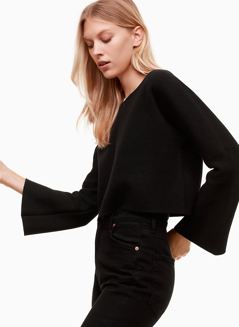 Wilfred Free FRANKS SWEATER | Aritzia