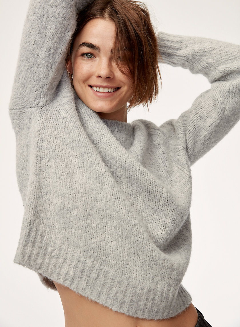 The Group by Babaton LUXE CREW SWEATER | Aritzia