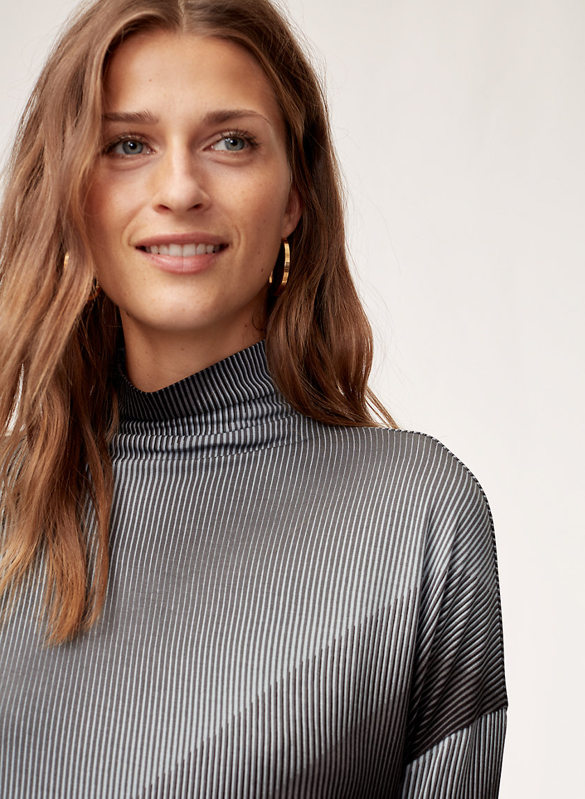 Babaton SEATON TURTLENECK | Aritzia
