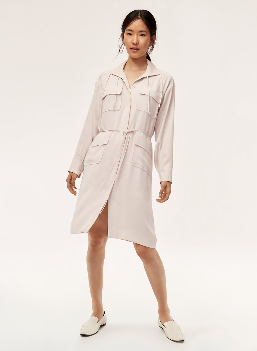 Babaton HOWITT DRESS | Aritzia