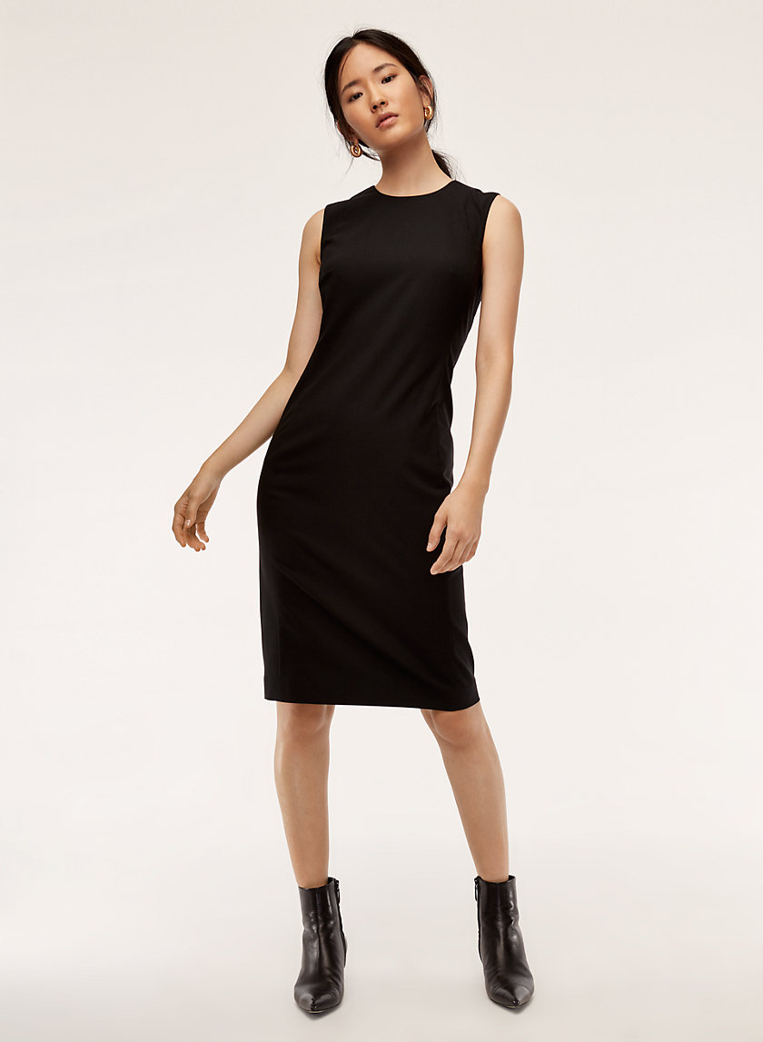 Babaton MILES DRESS | Aritzia