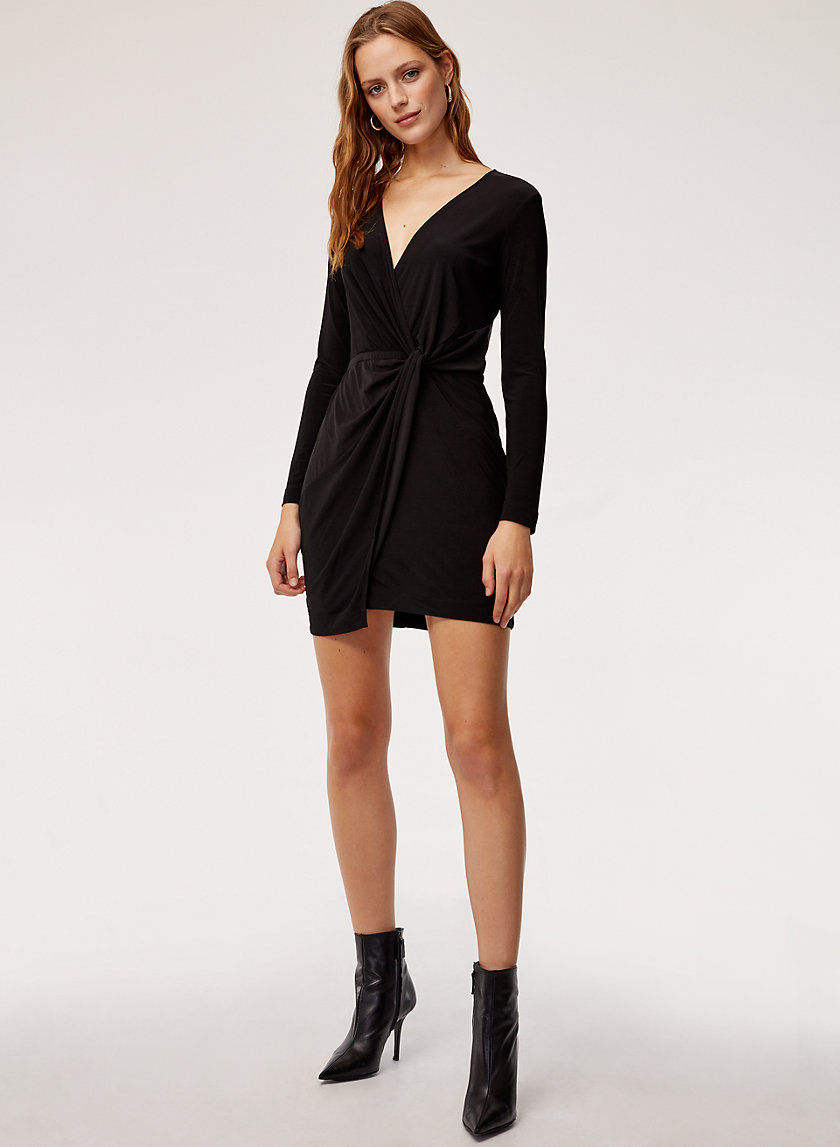 Babaton JEFF DRESS | Aritzia