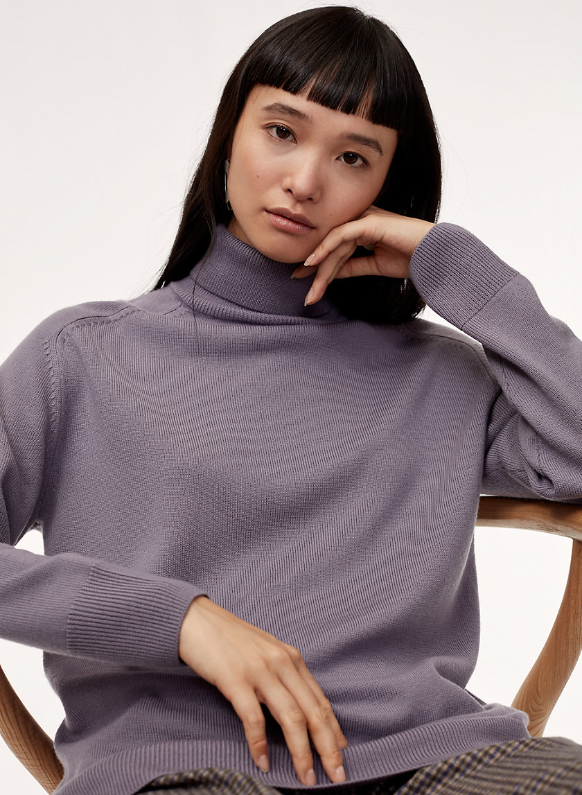 Wilfred AUGUSTINE TURTLENECK | Aritzia