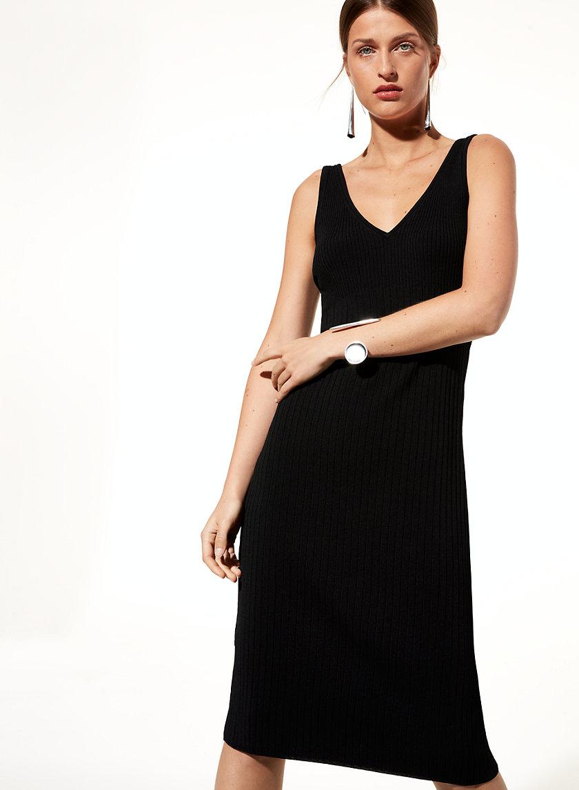 Babaton BRODERICK DRESS | Aritzia
