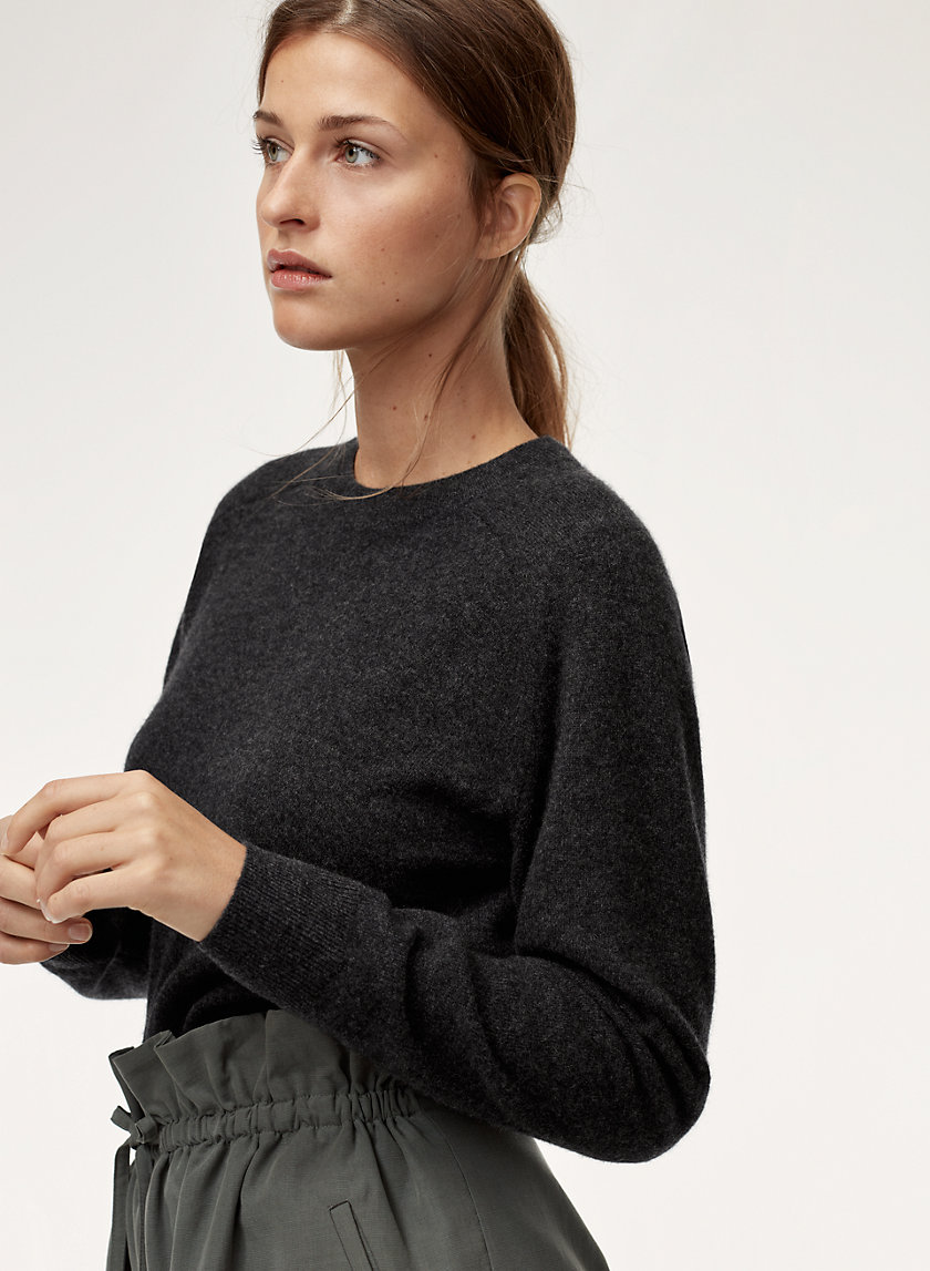 The Group by Babaton LUXE CASHMERE CREW | Aritzia