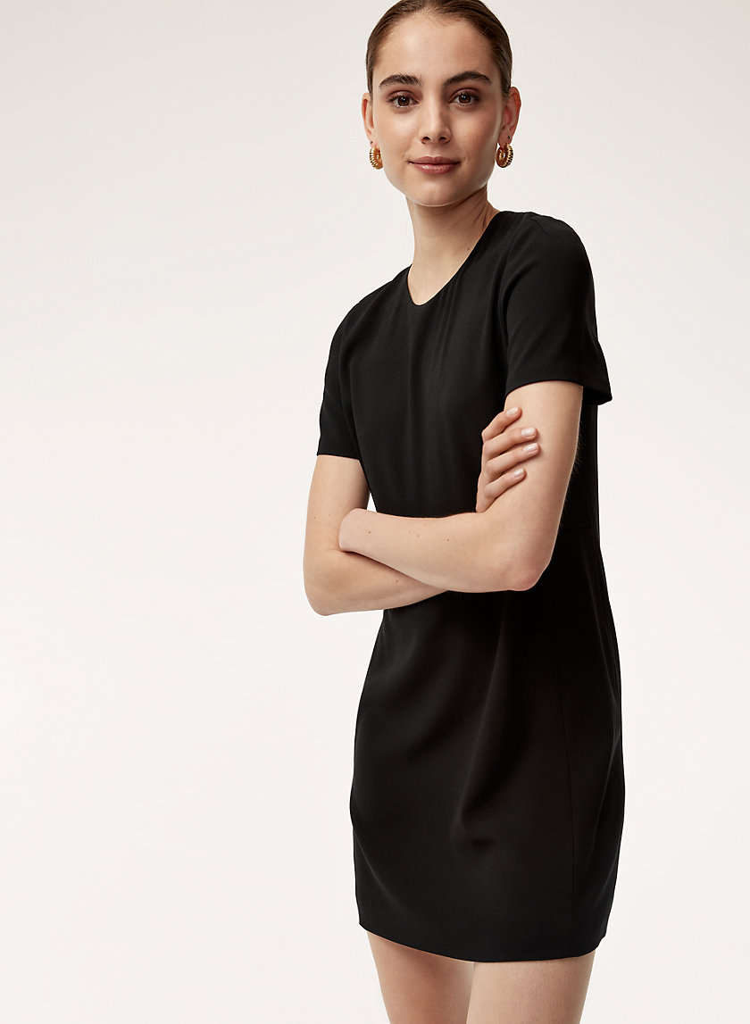 Babaton PATRICIO DRESS | Aritzia