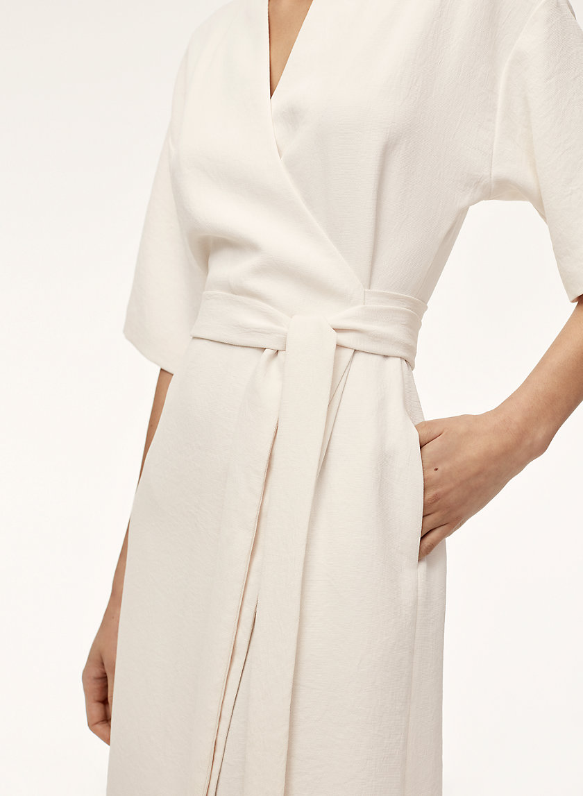 Babaton CLUZET DRESS | Aritzia