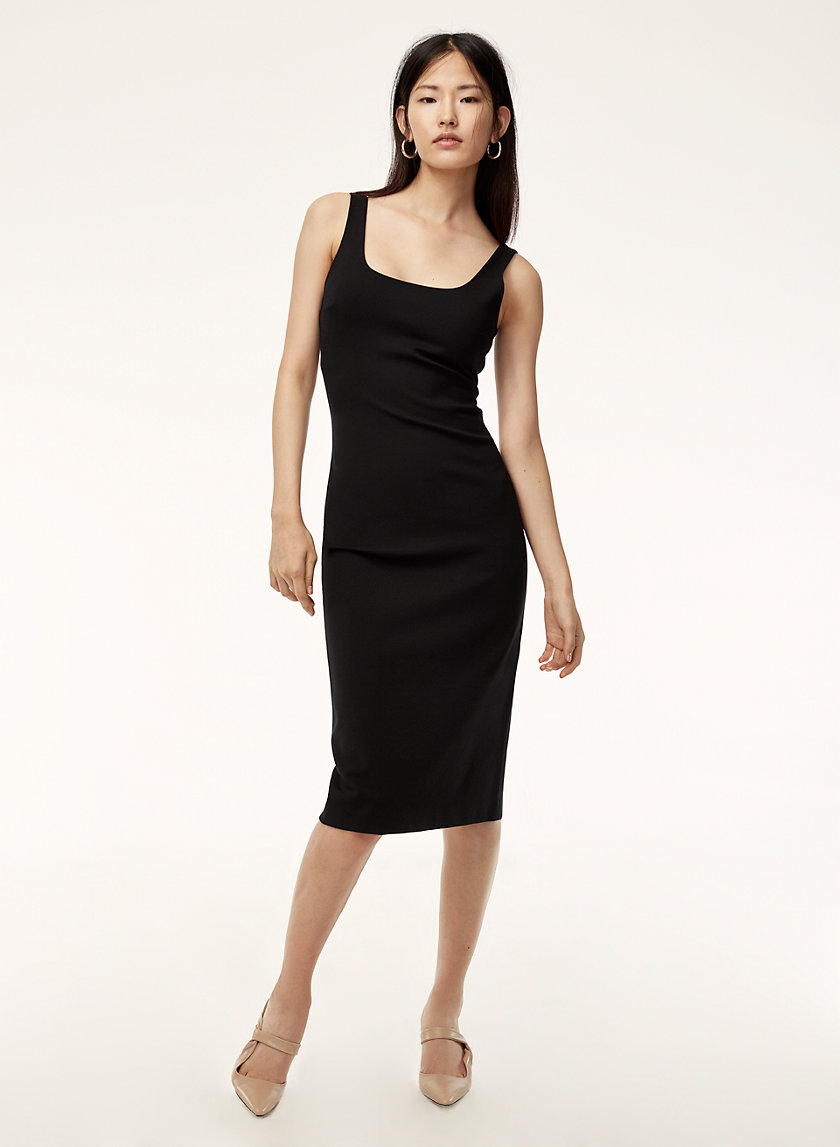 Babaton DERONDA DRESS | Aritzia