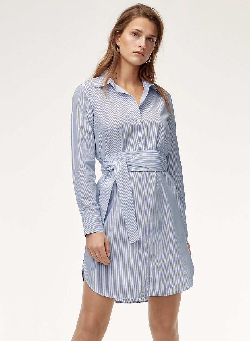 Babaton TILNEY DRESS | Aritzia