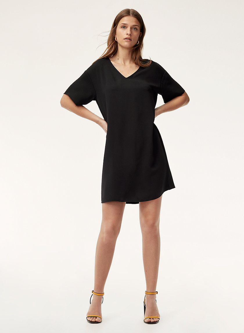 Babaton AARON DRESS | Aritzia