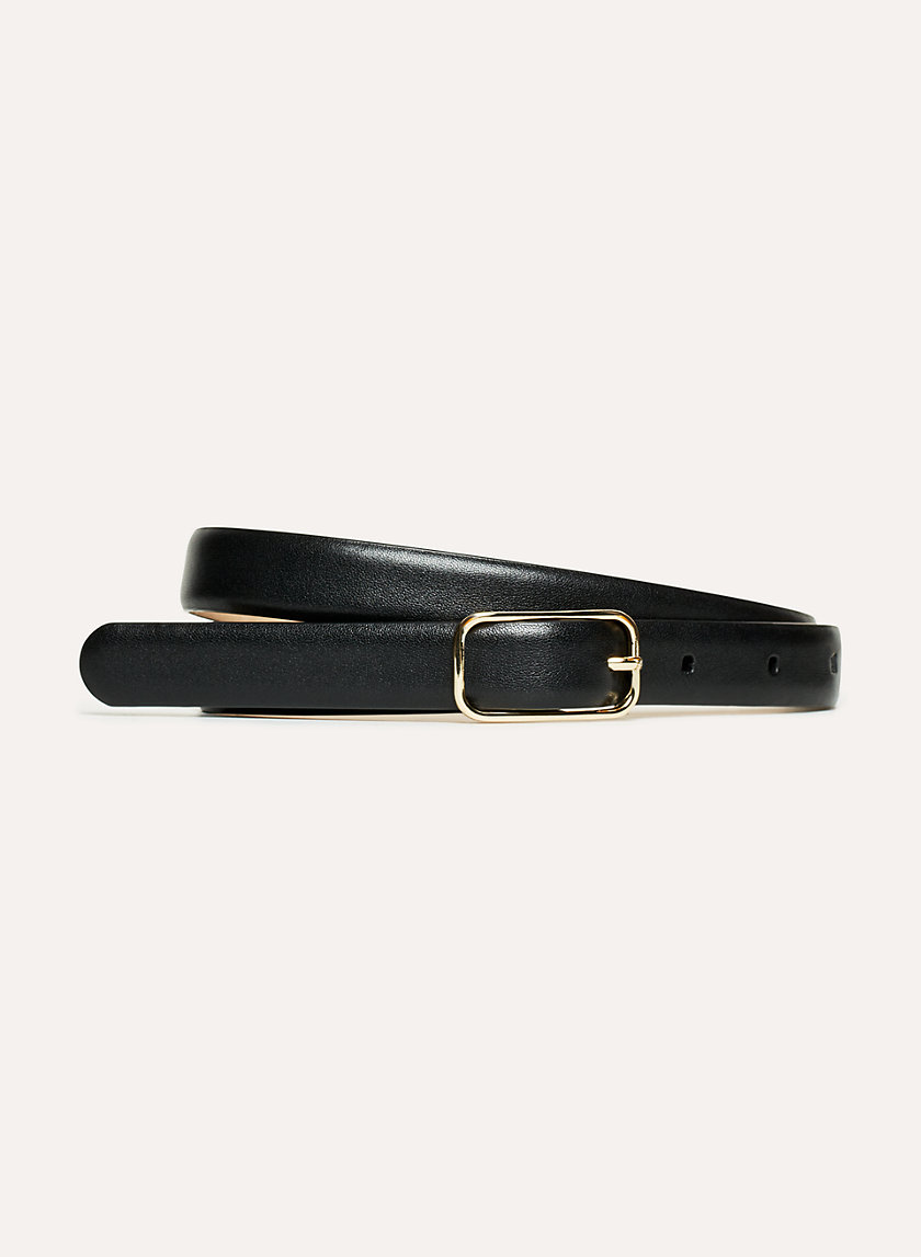 Babaton RON DRESS BELT | Aritzia