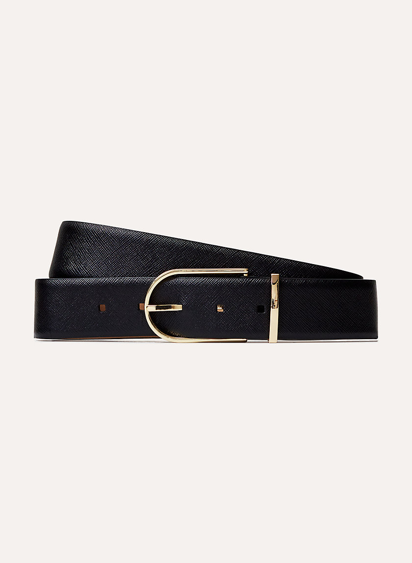 Babaton ANDRE DRESS BELT | Aritzia