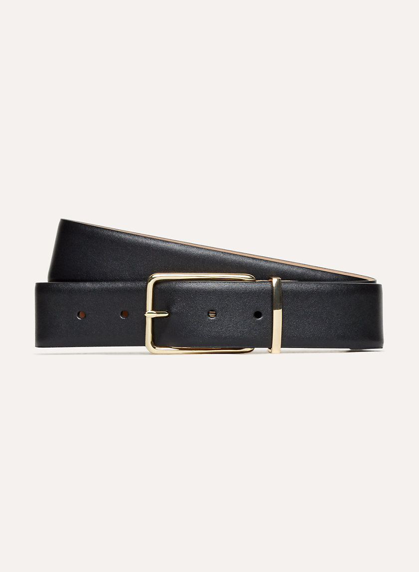 Babaton CHRIS DRESS BELT | Aritzia