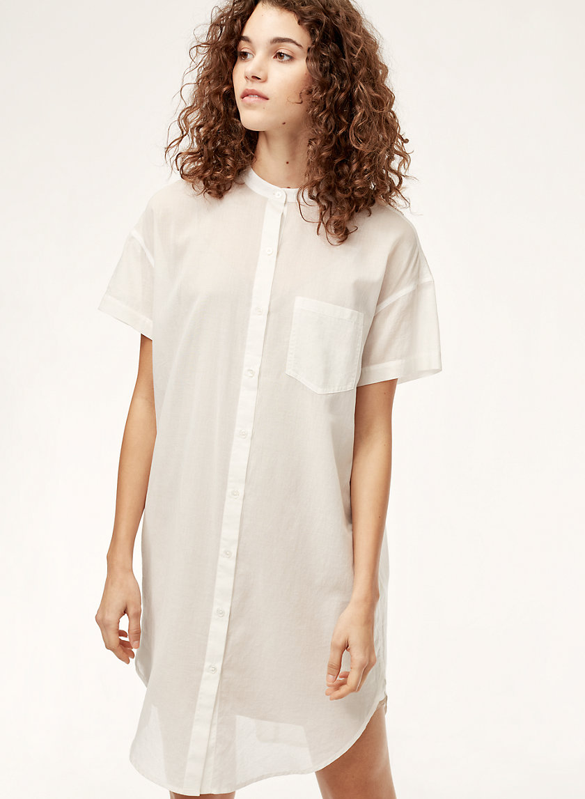 Wilfred Free FRANCES DRESS | Aritzia