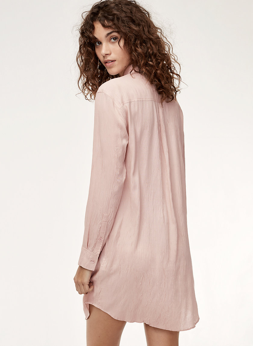 Wilfred Free HOWORTH DRESS | Aritzia
