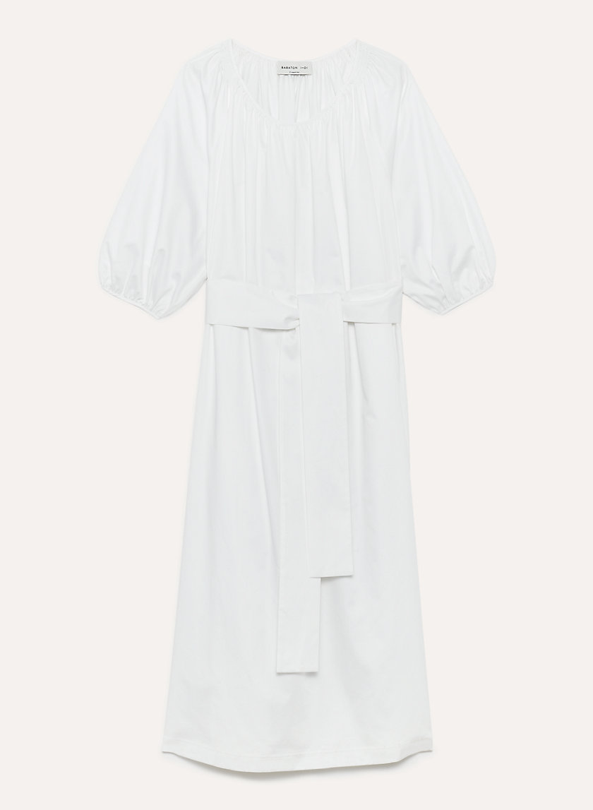 1-01 Babaton ATTENBERG DRESS | Aritzia