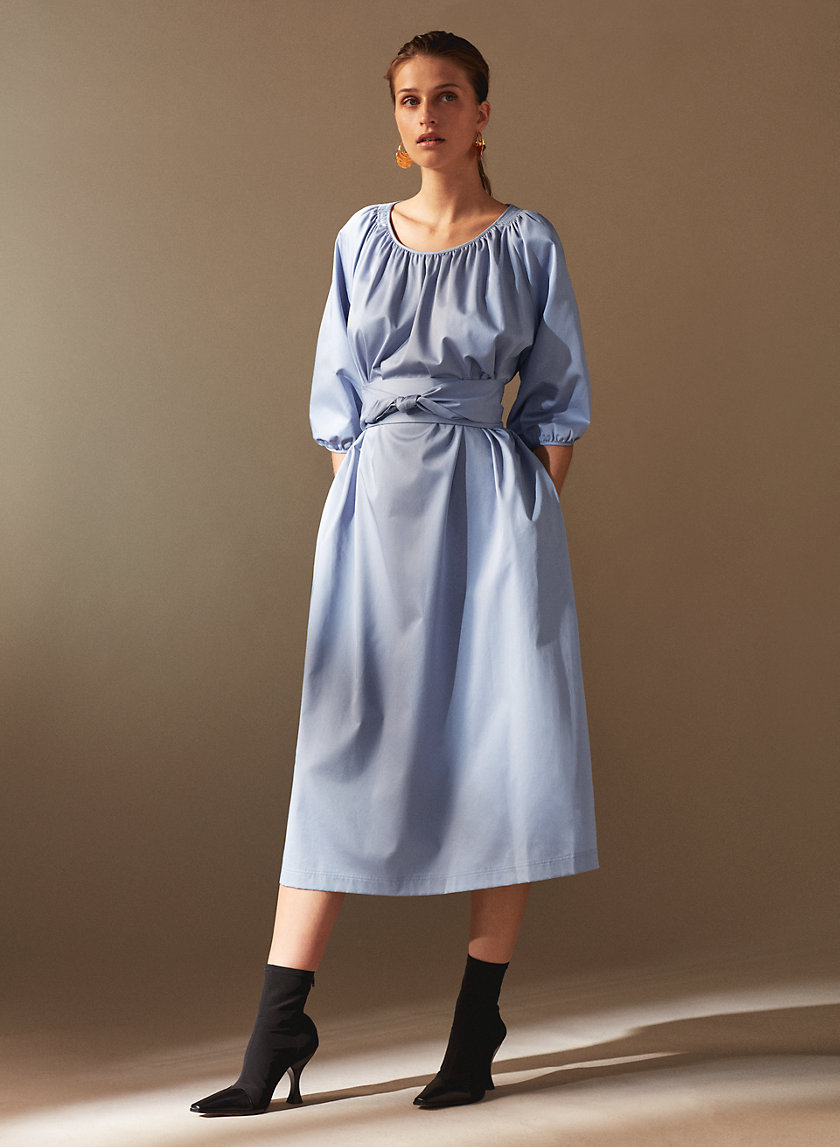 1-01 Babaton ATTENBERG DRESS | Aritzia