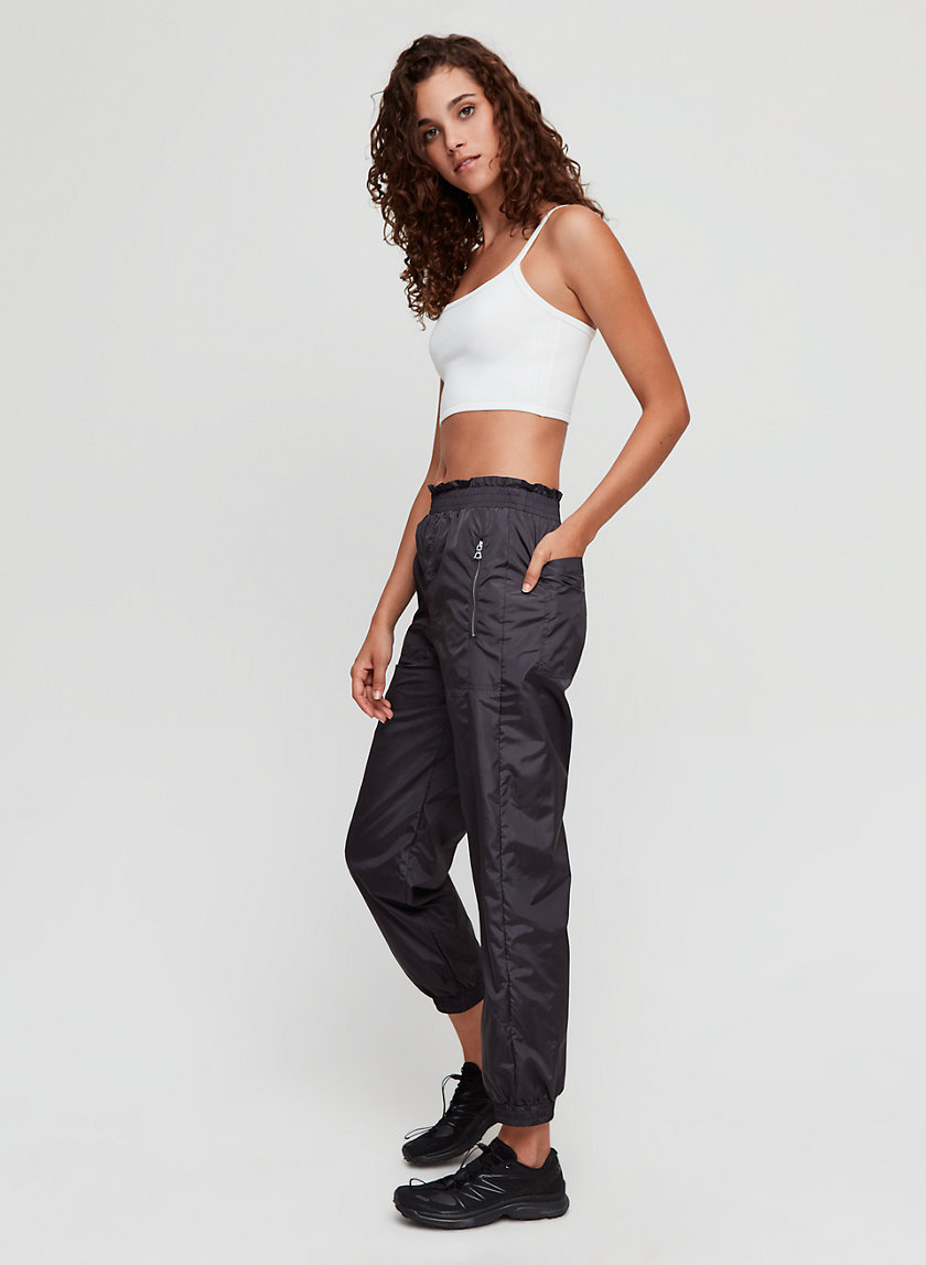 The Group by Babaton BEC PANT | Aritzia