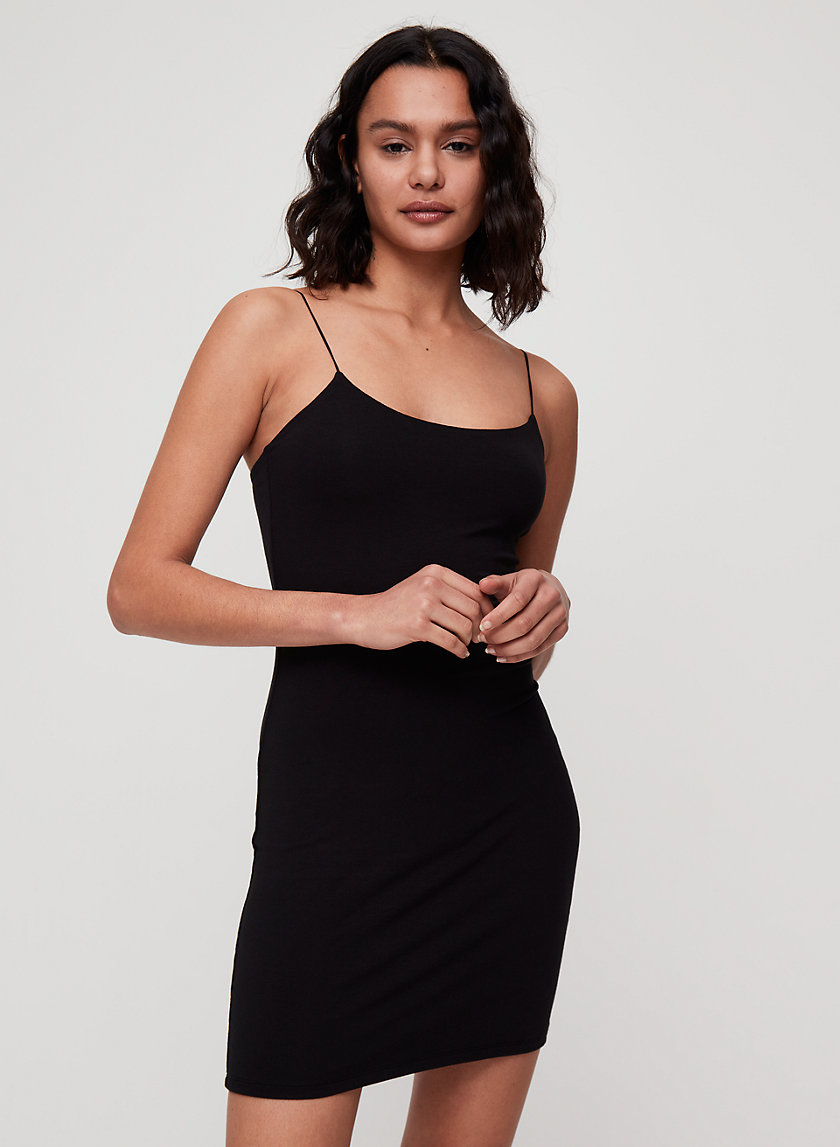 Wilfred Free ROOS DRESS | Aritzia