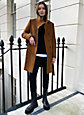 Babaton THE CONNOR COAT | Aritzia